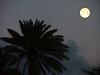 Full Moon on the Big Island