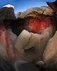 cropped fisheye