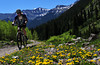 Biking up Engineer Pass