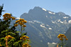 North Cascade National Park