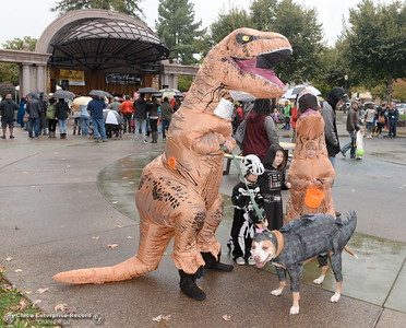 Tyrannosaurus Rex Kameron Davis of Chico with 6-year -old T-Rex Brayden Akerson along with Charity and Connor Lish get candy during Treat Street in downtown Chico, Calif. Monday Oct. 31, 2016. (Bill Husa -- Enterprise-Record)