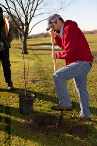 Tree Planting_Crenshaw_Preston__2020_013