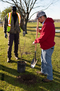 Tree Planting_Crenshaw_Preston__2020_012