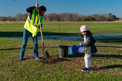 Tree Planting_Crenshaw_Preston__2020_032