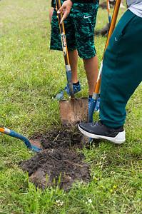 Tree Planting_Holly Bay_2019_039