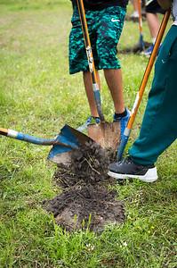 Tree Planting_Holly Bay_2019_040