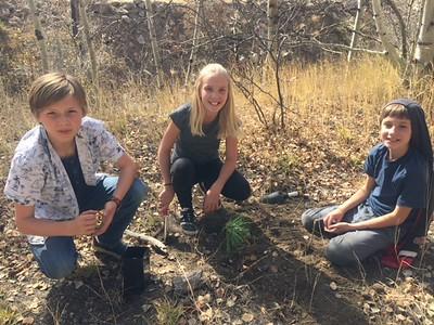 Tree Planting buddies: Third & Sixth Grades