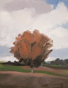 Tree Portrait 13