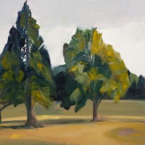 Tree Portrait, 4