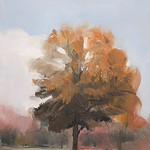 Tree Portrait 8
