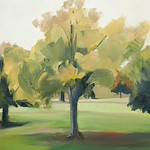 Tree Portrait 3