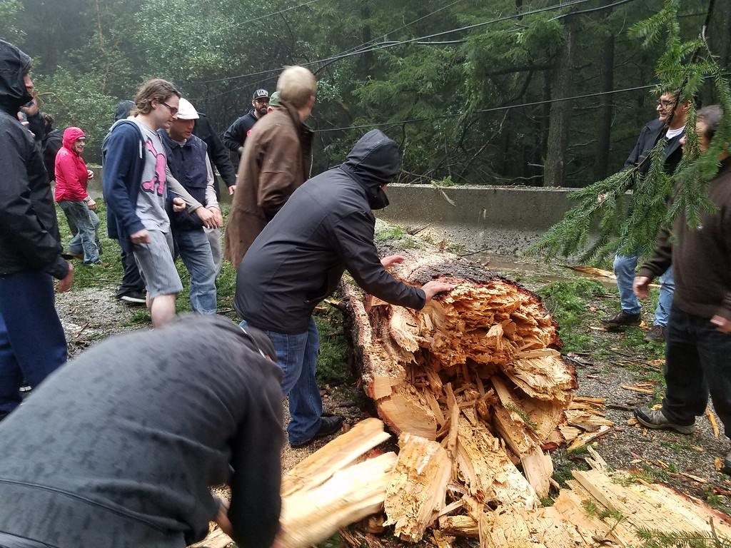 . Liza Miller -- Contributed Commuters on Highway 17 use a chainsaw and manpower to remove a fallen tree near the summit on Monday, Feb. 20, 2017.