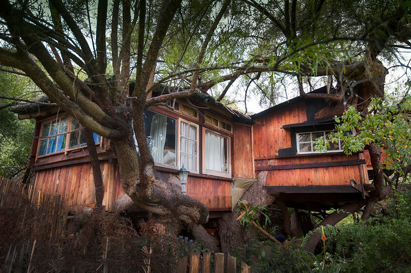 treehouse country life