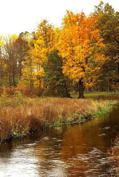 A Michigan Autumn Scenic
