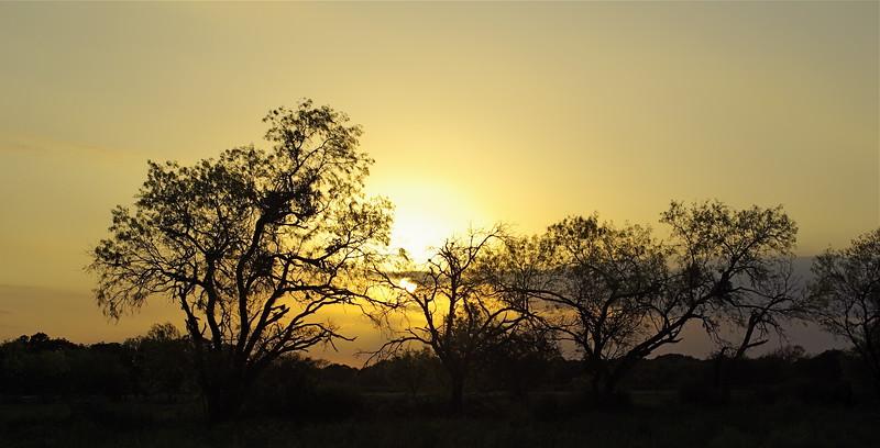 Panoramic Sunset, Texas, Landscape