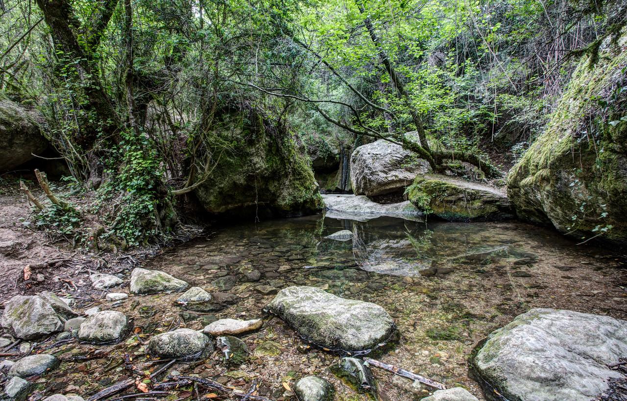 Martinet Creek (Aiguafreda, Catalonia)