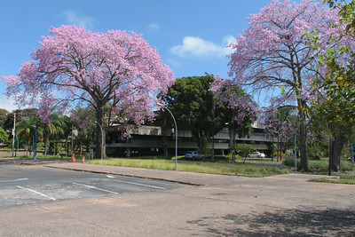 University of Brasilia, President's Office