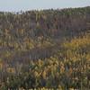 Forest fires plague in Buriatia,  Siberia. (Oct 2008)
