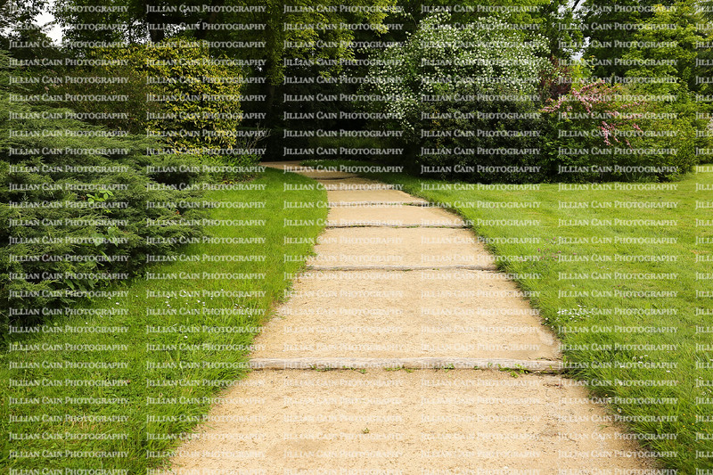 Curved garden path surrounded by lush foliage
