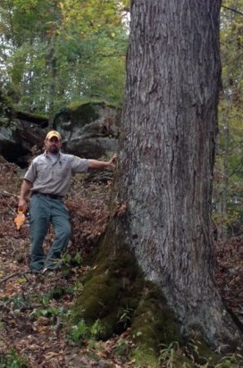 Lewis County<br /> 11.4' x 138' x 90' (ACS)<br /> D. Cooley 10/6/2014