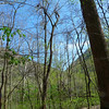 Near Cunard, Fayette County, WV<br /> 3.7' x 63.4' x 32'<br /> Photo by Allen Waldron 3/29/2012