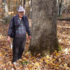 Near Ghent, Raleigh County, WV<br /> Ray Arnold<br /> 8.6' x 96.1' x 51.5' (average crown spread)<br /> photo by Allen Waldron 10/24/2012