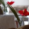 Flowers on table  jpg