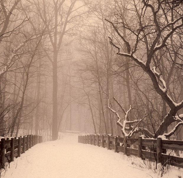 Winter's Walk, Palos Park, Illinois