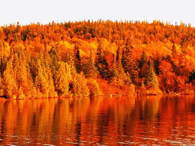 Aguasabon River Reflections, Autumn 2020,