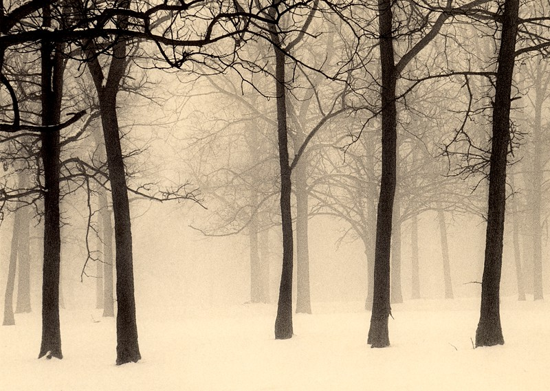Palos Winter, Palos Park, Illinois