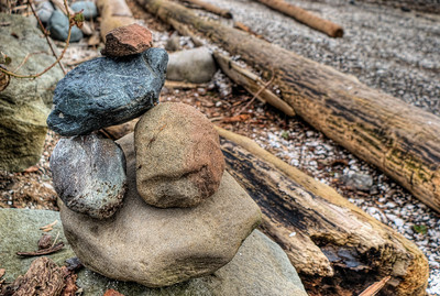 """Roots & Rocks - Vancouver Island BC Canada Please visit our blog """"Roots & Rocks"""" for the story behind the photo."""