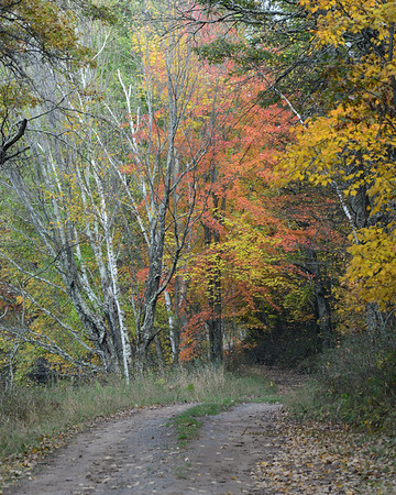 Hay Creek Road at Crex Meadows Oct 2017