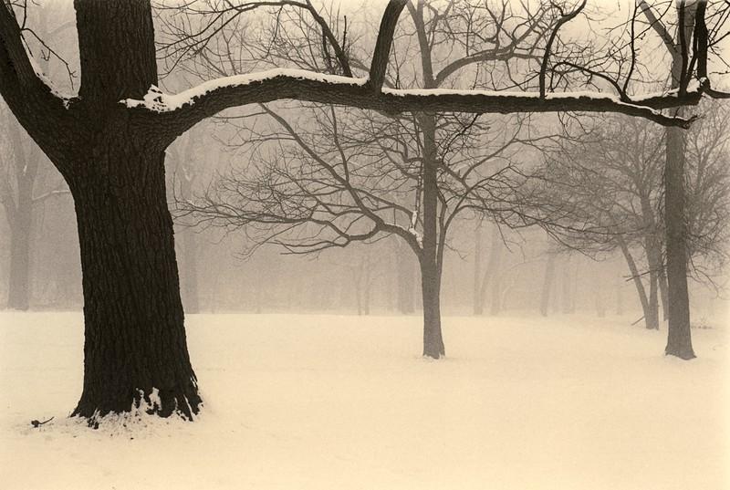 Gatekeeper, Palos Park, Illinois