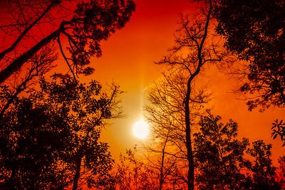 Black or Burning Sun