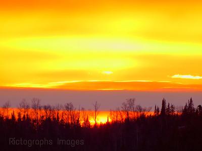 Trees & Nature's Sun Set,