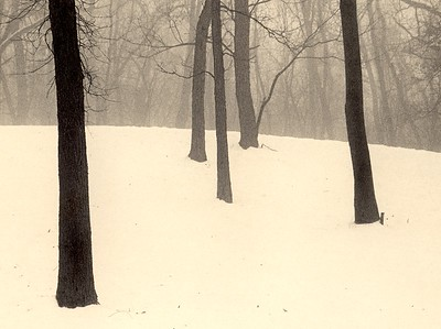 Palos Woods, Palos Park, Illinois