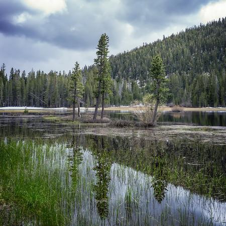 Spring at Grass Lake