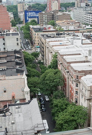 Taken in late June from the roof of 245W, our block is in the foreground showing off a conspiracy of trees!  At the top of the frame are the treetops in Central Park.