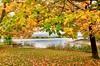 Fall at Redbank