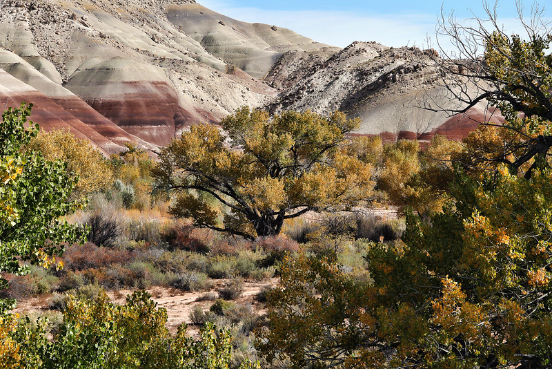 Morrison formation and Cottonwood Gold