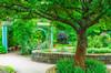 Herb Garden @ Inniswood