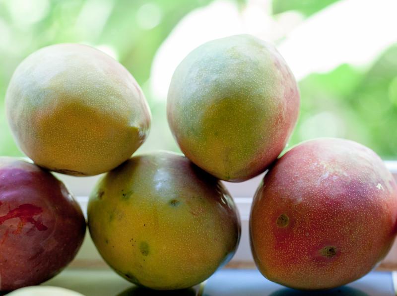mangos on kitchen windowsill