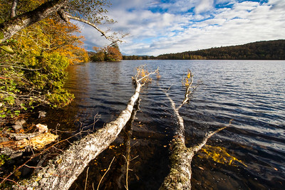 Autumn colours at Loch Achilty