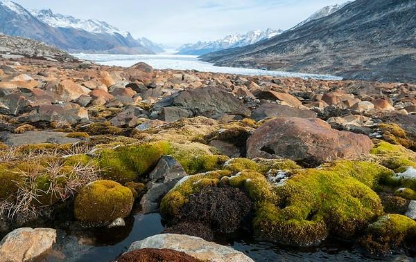 Groenland 2017 late Sept-9040 (Medium)