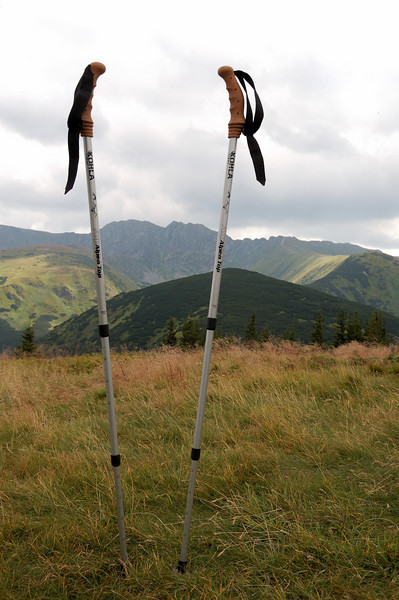 Kohla Alpen Top hiking sticks. Will never leave home without them. I think they were essential for the success of this hike.