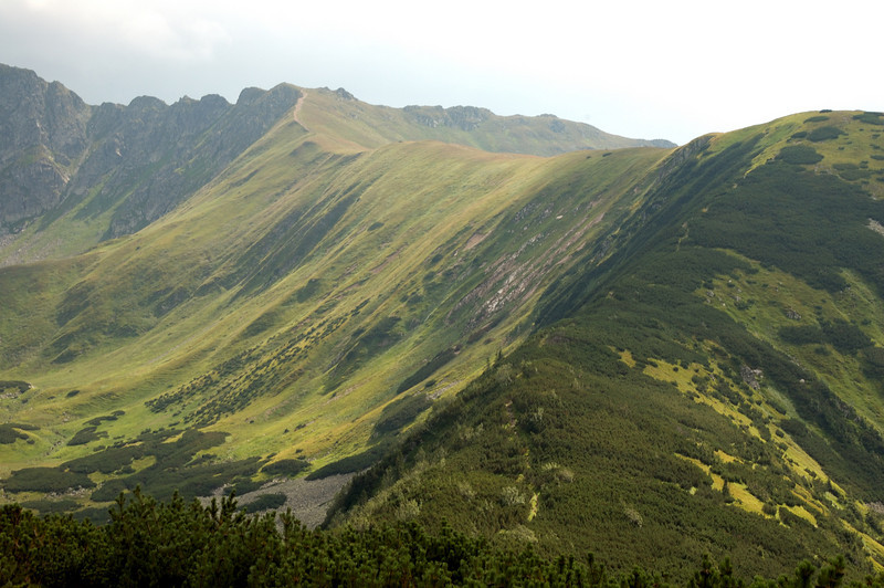 We decided on reaching Dziumbier from the North. The views are best from this side. This is the yellow track.