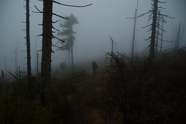 Few meters before Turbacz summit