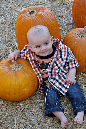 Pumpkin Patch, 10-24-09