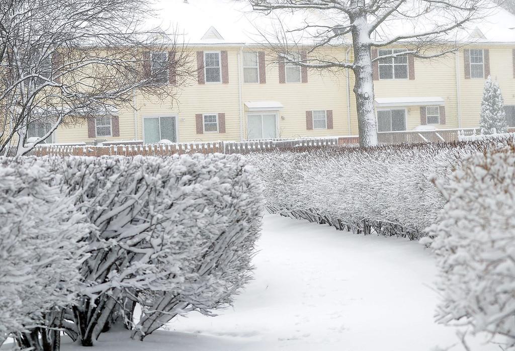 . A snowy neighborhood in Hamilton. gregg slaboda photo