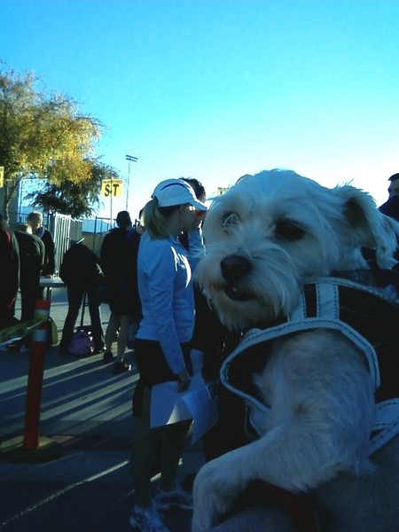 """Snow checking in at letter """"S"""" at the Tinsel Triathlon."""